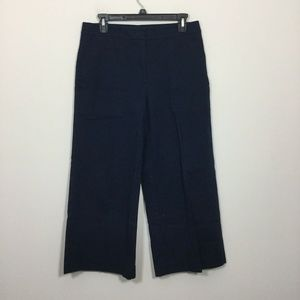 Ann Taylor Factory Size 6 Blue Cropped Pants